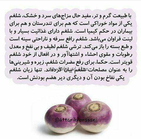 طب سنتی شلغم