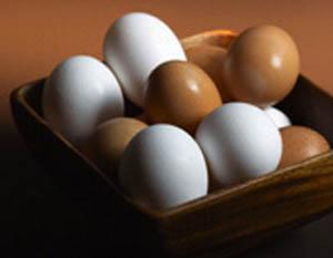مرغ و تخم مرغ ماشینی