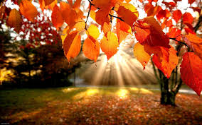 پاییز/طب سنتي