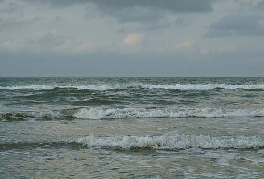 خواص گِل دریا
