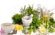 گیاهان آرامبخش در طب سنتی